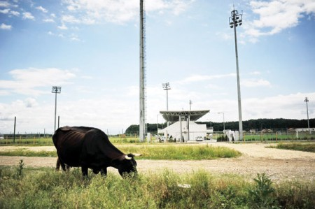 Stade Buftea